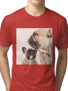 Role Model Tri-blend T-Shirt