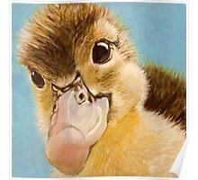 Cute duckling, child nursery art, Poster