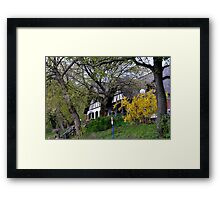 Manor house among the trees Framed Print