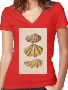 Thesaurus conchyliorum Monographs of genera of shells George Brettingham Sowerby 1887 V1-V5 259 Women's Fitted V-Neck T-Shirt