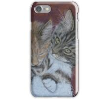 Cosy Cats iPhone Case/Skin
