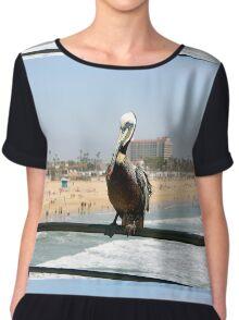 Pelican  Chiffon Top
