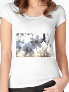 Almond Blossom @ sunset Women's Fitted Scoop T-Shirt