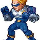 Captain Commando by Lupianwolf