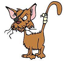 Fighting cat clip art cat Photographic Print