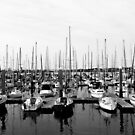 Study in Black and White. Marina Landscape by Wendy Mogul