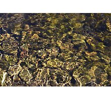 Sunny River Rocks Poster Photographic Print