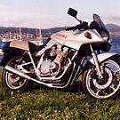 1981 KATANA 1100 by Ricky Pfeiffer