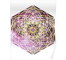Scorpius Pink | Metatron Sacred Geometry Sticker Poster
