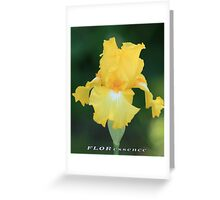 YELLOW IRIS AGAINST GREEN Greeting Card