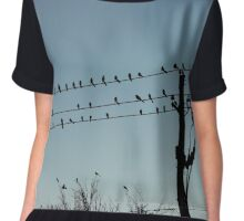 Birds of a Feather Line Powerlines Together Chiffon Top