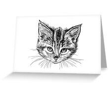 Hand drawn cats head set Greeting Card