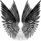 Wings by Aimee Cozza