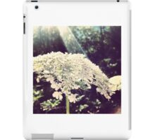 Sunbeam on Queen Anne's Lace iPad Case/Skin