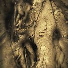 Tree Trunk by Roz McQuillan