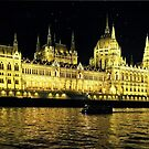 Hungarian Parliament Building  by Lucinda Walter