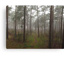 Baltic Trees Canvas Print