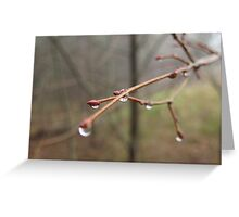 Lonely Drop Greeting Card