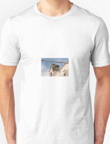 Decay Unisex T-Shirt