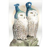 Strange Snowy Owls Poster