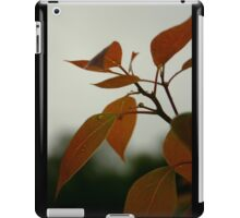 Stormy Afternoon iPad Case/Skin