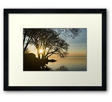 Golden Tranquility - Lacy Tree Silhouettes on the Lake Shore Framed Print