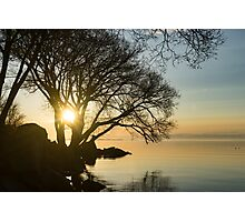 Golden Tranquility - Lacy Tree Silhouettes on the Lake Shore Photographic Print