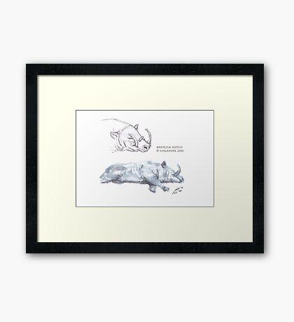 Babirusa Sketch @ Singapore Zoo Framed Print