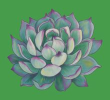 Succulent plant Baby Tee