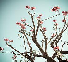 West Coast Nature 1 by ElleEmDee