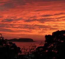 Good Morning - Australia Day 2012 by Trish Meyer