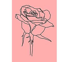 Rose Series Photographic Print