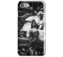 Siamese cats black & white iPhone Case/Skin