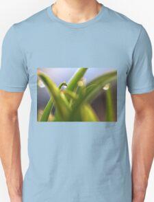 Garden Criss Cross T-Shirt