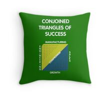 Conjoined Triangles of Success - Silicon Valley Throw Pillow
