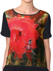 spider on cactus flower Chiffon Top