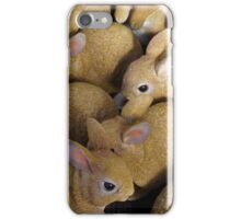 Spring Rabbits Ready for Easter iPhone Case/Skin