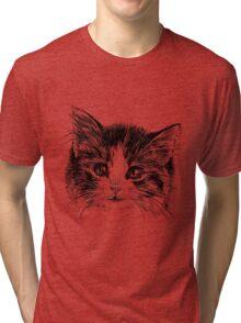 Cartoon purple cat Tri-blend T-Shirt