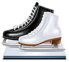 Ice hockey shoes icons Photographic Print