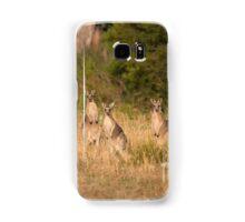 Trio of Posing Kangaroos Samsung Galaxy Case/Skin