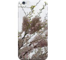 Springtime Abundance - Gently Pink Cherry Blossoms iPhone Case/Skin