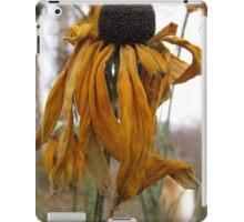 Dance in the Autumn Garden 2 iPad Case/Skin