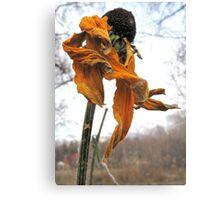 Dance in the Autumn Garden 1 Canvas Print