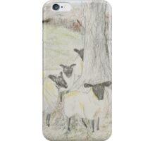 Pastel Sheep iPhone Case/Skin
