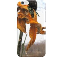 Dance in the Autumn Garden 1 iPhone Case/Skin