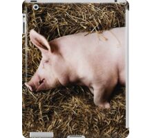 Let Sleeping Pigs Lie iPad Case/Skin