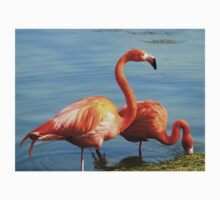 Pretty in Pink | Flamingos | *NEW INCLUDED* One Piece - Short Sleeve