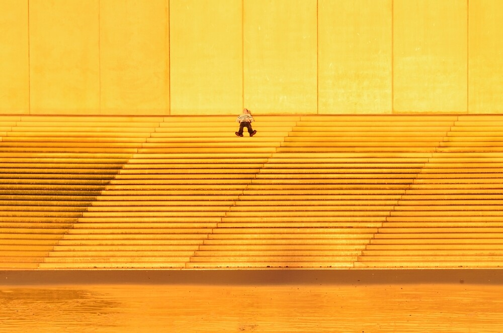 Isolated on Gold by Stephen Frost