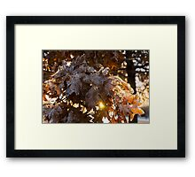 Honey Colored Honeycomb Ice With a Sun Flare Framed Print