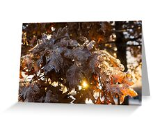 Honey Colored Honeycomb Ice With a Sun Flare Greeting Card